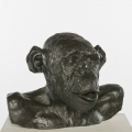 Chimp Busts HAM (Tongue) #1 Bronze, 2011