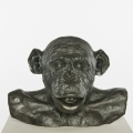 Chimp Busts HAM (Tongue) #3 Bronze, 2011