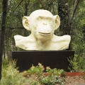 White-ape, 2005, McClelland Sculpture park and Gallery, Langwarrin, victoria, Australia