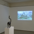Hosei, Hosei, Video, Karen Woodbury Gallery