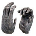 Chimpanzee Hands, 2005