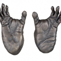 Chimpanzee Feet, 2005