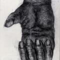 Gorilla Hand 2000