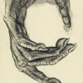 Gibbon-Hand-1,Charcoal-on--Silk-_Polyester,-2014,128cm-x101cm